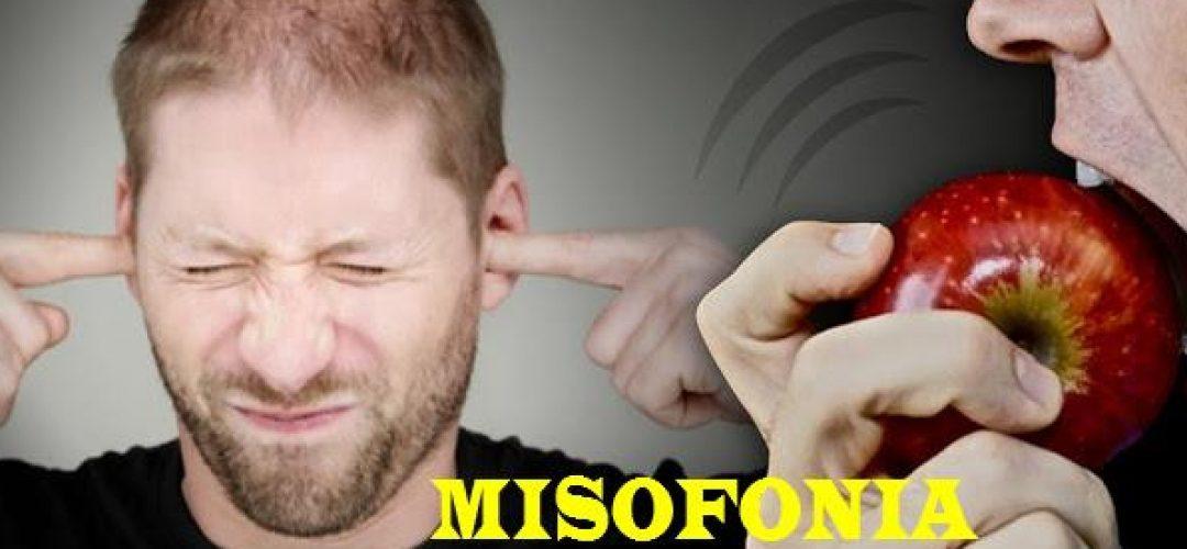 ¿Qué es la misofonía?