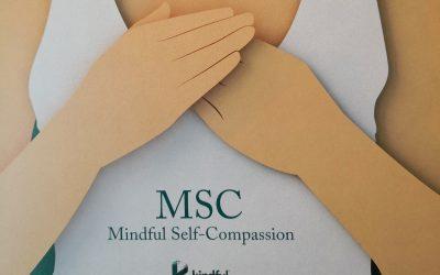 Novedades en Curso de Autocompasión y Cursos de Iniciación de Mindfulness