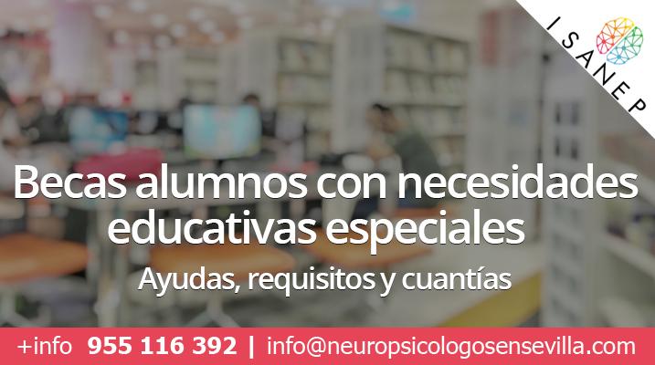 BECAS NECESIDADES EDUCATIVAS ESPECIALES CURSO 2019-2020