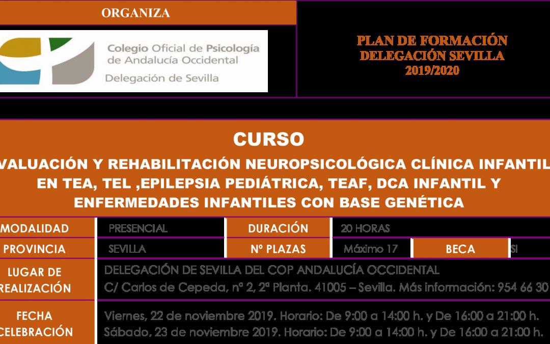 CURSO. EVALUACIÓN Y REHABILITACIÓN NEUROPSICOLÓGICA CLÍNICA INFANTIL EN TEA, TEL ,EPILEPSIA PEDIÁTRICA, TEAF, DCA INFANTIL Y ENFERMEDADES INFANTILES CON BASE GENÉTICA