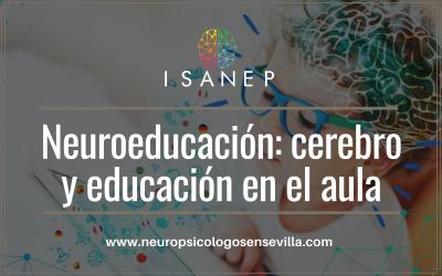 Neuroeducación: cerebro y educación en el aula